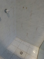 Shower Repairs Bankstown